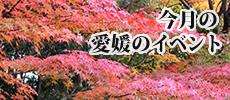 今月の愛媛のイベント